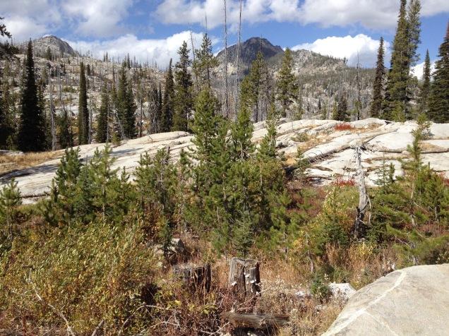 Lick Creek Summit